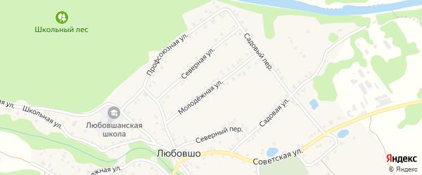 Молодежная улица на карте деревни Любовшо с номерами домов