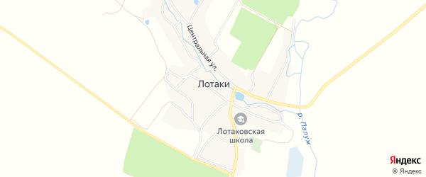 Карта села Лотаки в Брянской области с улицами и номерами домов