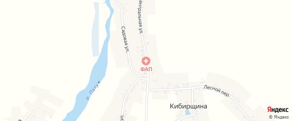 Центральная улица на карте деревни Кибирщины с номерами домов