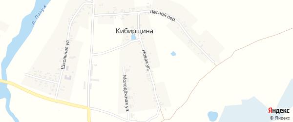 Новая улица на карте деревни Кибирщины с номерами домов