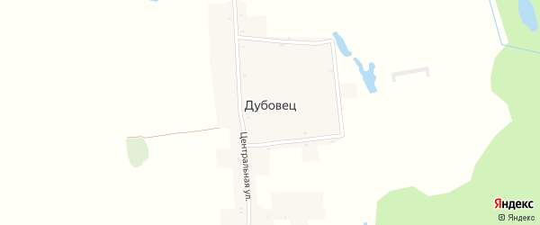 Центральная улица на карте поселка Дубовца с номерами домов