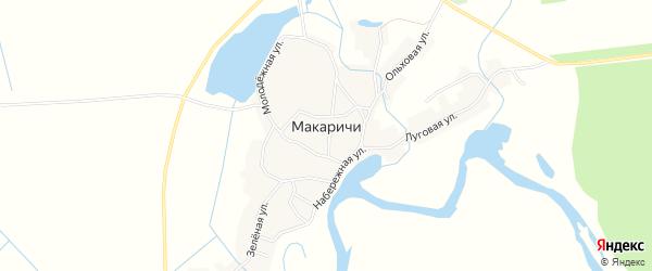 Карта деревни Макаричей в Брянской области с улицами и номерами домов