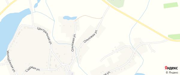 Ольховая улица на карте деревни Макаричей с номерами домов