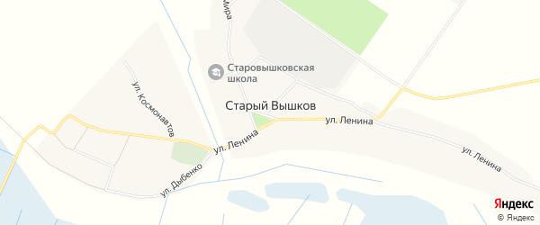 Карта села Старого Вышкова в Брянской области с улицами и номерами домов