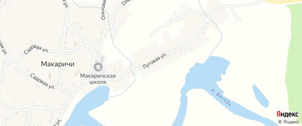 Луговая улица на карте деревни Макаричей с номерами домов