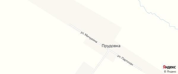 Улица Мичурина на карте поселка Прудовки с номерами домов