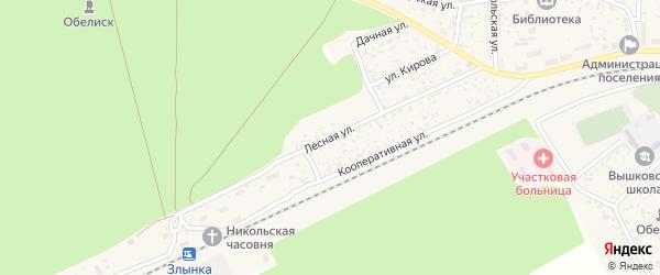 Лесная улица на карте поселка Вышкова с номерами домов