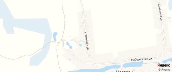 Колхозная улица на карте села Медведи с номерами домов