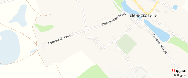 Молодежная улица на карте села Денисковичи с номерами домов