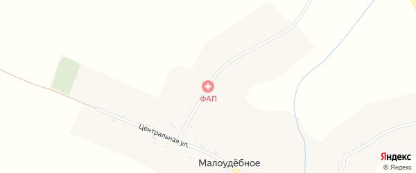 Школьная улица на карте деревни Малоудебного с номерами домов