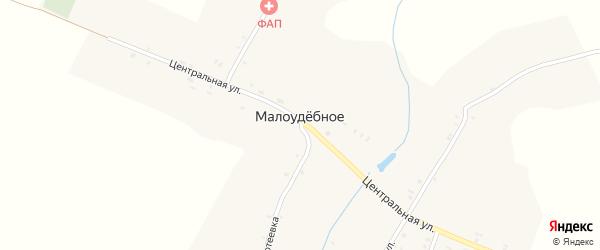 Совхозная улица на карте деревни Малоудебного с номерами домов