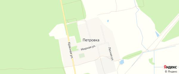 Карта деревни Петровки в Брянской области с улицами и номерами домов