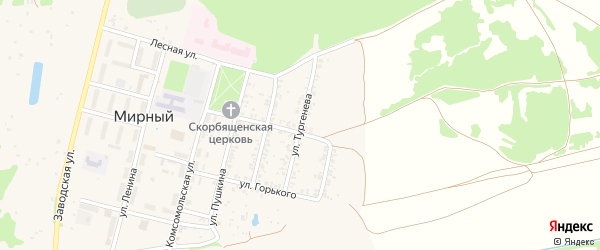 Улица Тургенева на карте Мирного поселка с номерами домов