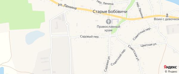 Садовый переулок на карте села Старых Бобовичей с номерами домов