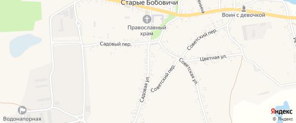 Садовая улица на карте села Старых Бобовичей с номерами домов