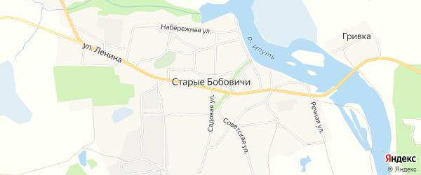 Карта села Старых Бобовичей в Брянской области с улицами и номерами домов