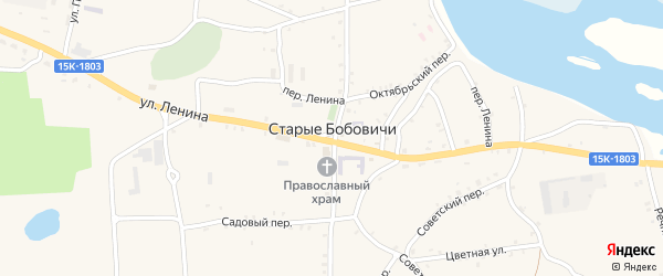 Октябрьская улица на карте села Старых Бобовичей с номерами домов