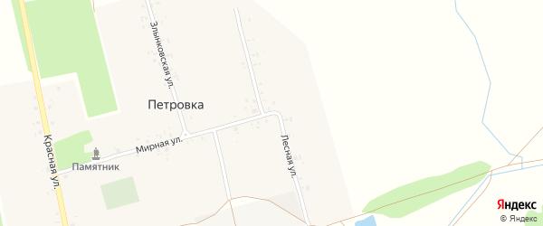 Лесная улица на карте деревни Петровки с номерами домов