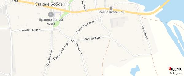 Цветная улица на карте села Старых Бобовичей с номерами домов