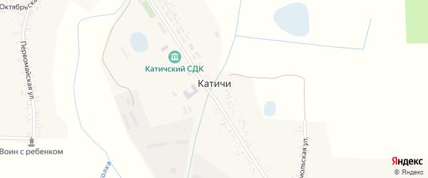 Партизанская улица на карте села Катичи с номерами домов