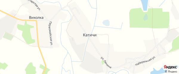 Карта села Катичи в Брянской области с улицами и номерами домов