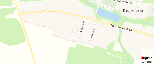 Садовая улица на карте деревни Карпиловки с номерами домов