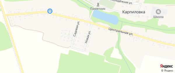 Новая улица на карте деревни Карпиловки с номерами домов