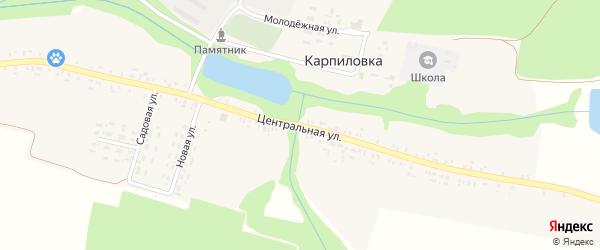 Центральная улица на карте деревни Карпиловки с номерами домов