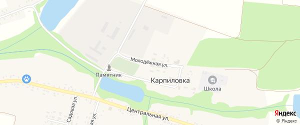 Молодежная улица на карте деревни Карпиловки с номерами домов