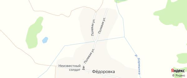 Полевая улица на карте деревни Федоровки с номерами домов