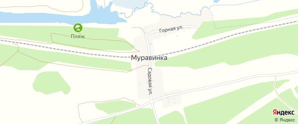 Садовый переулок на карте деревни Муравинки с номерами домов