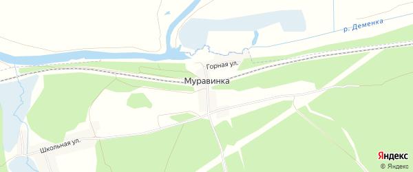 Карта деревни Муравинки в Брянской области с улицами и номерами домов