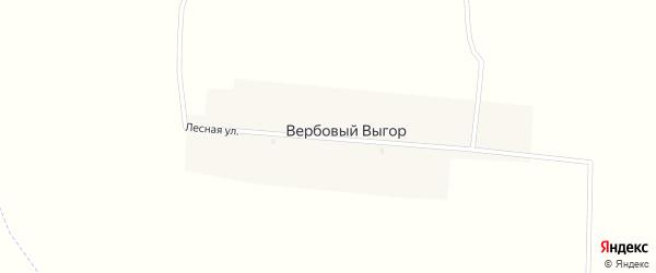 Лесная улица на карте поселка Вербового Выгора с номерами домов