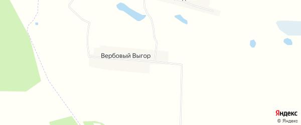 Карта поселка Вербового Выгора в Брянской области с улицами и номерами домов