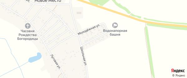 Молодежная улица на карте села Нового Места с номерами домов