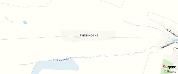 Карта поселка Рябиновки в Брянской области с улицами и номерами домов