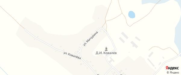 Улица Мичурина на карте деревни Ямного с номерами домов