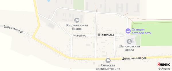 Новая улица на карте села Шеломы с номерами домов
