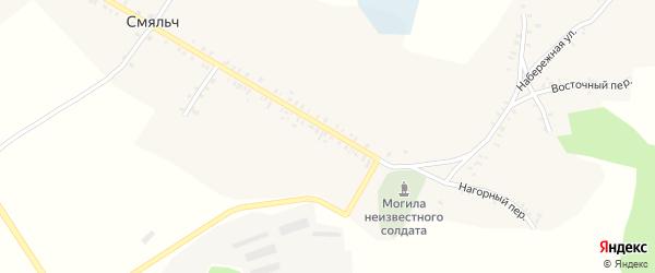 Молодежный переулок на карте села Смяльч с номерами домов
