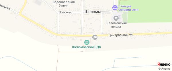 Центральная улица на карте села Шеломы с номерами домов