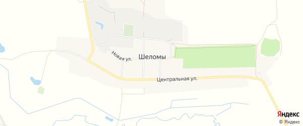 Карта села Шеломы в Брянской области с улицами и номерами домов