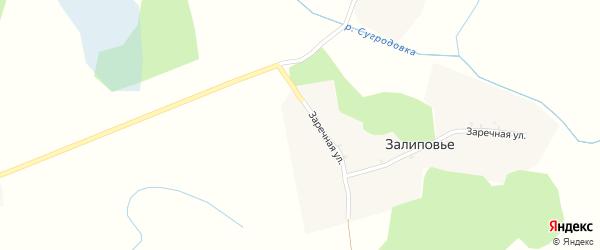Заречная улица на карте поселка Залиповья с номерами домов