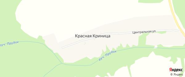 Советская улица на карте поселка Красной Криницы с номерами домов