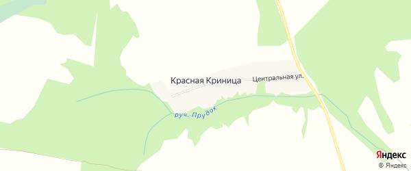 Карта поселка Красной Криницы в Брянской области с улицами и номерами домов