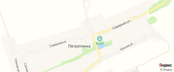 Северная улица на карте села Петрятинки с номерами домов