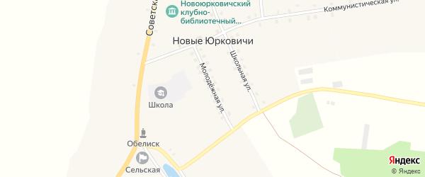 Молодежная улица на карте села Новые Юрковичи с номерами домов