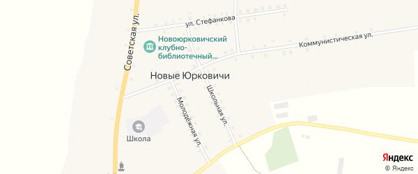 Школьная улица на карте села Новые Юрковичи с номерами домов