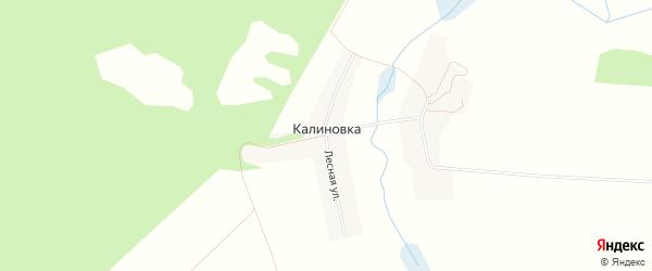 Карта поселка Калиновки в Брянской области с улицами и номерами домов