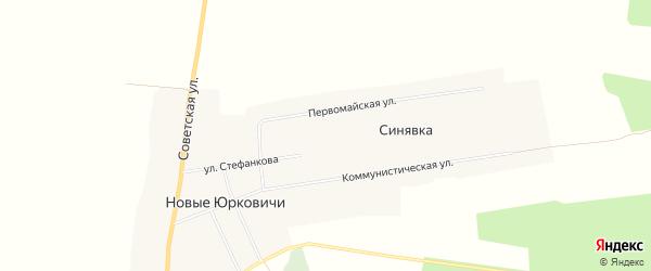 Карта села Новые Юрковичи в Брянской области с улицами и номерами домов