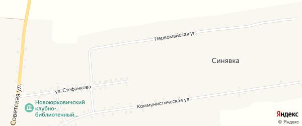 Территория 48км автодор Чуровичи-граница гос-ва Укр на карте села Новые Юрковичи с номерами домов